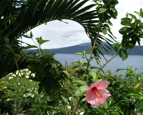 nicaragua for you holiday home rental foliage plants